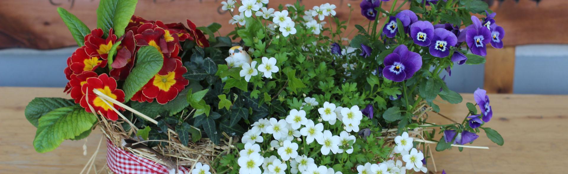 Terrasse und Garten Mittwoch bis Sonntag geöffnet